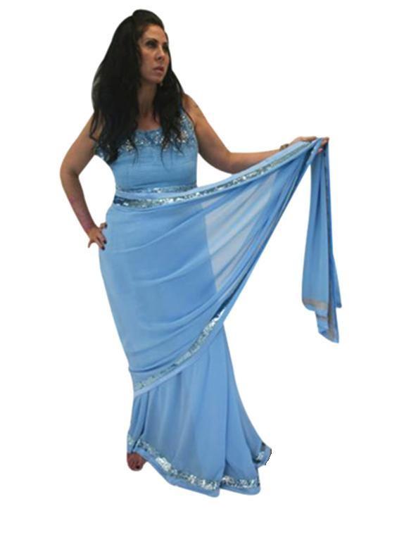 Sequin Border Sari