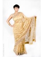 Gold Lace Sari