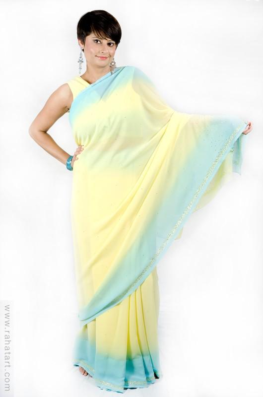 Pretty Pastel Sari