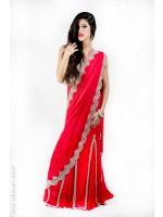 Scarlet Panel Sari