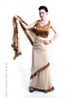 Leopard Print Sari