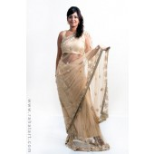 Metallic Gold Sari